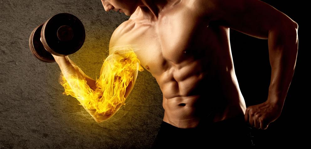 バルクアップHMBプロはあくまで筋肉の成長を促進するもの