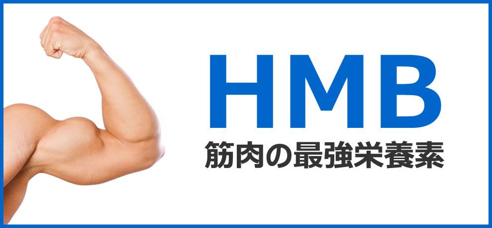 HMBの効果について詳しく解説