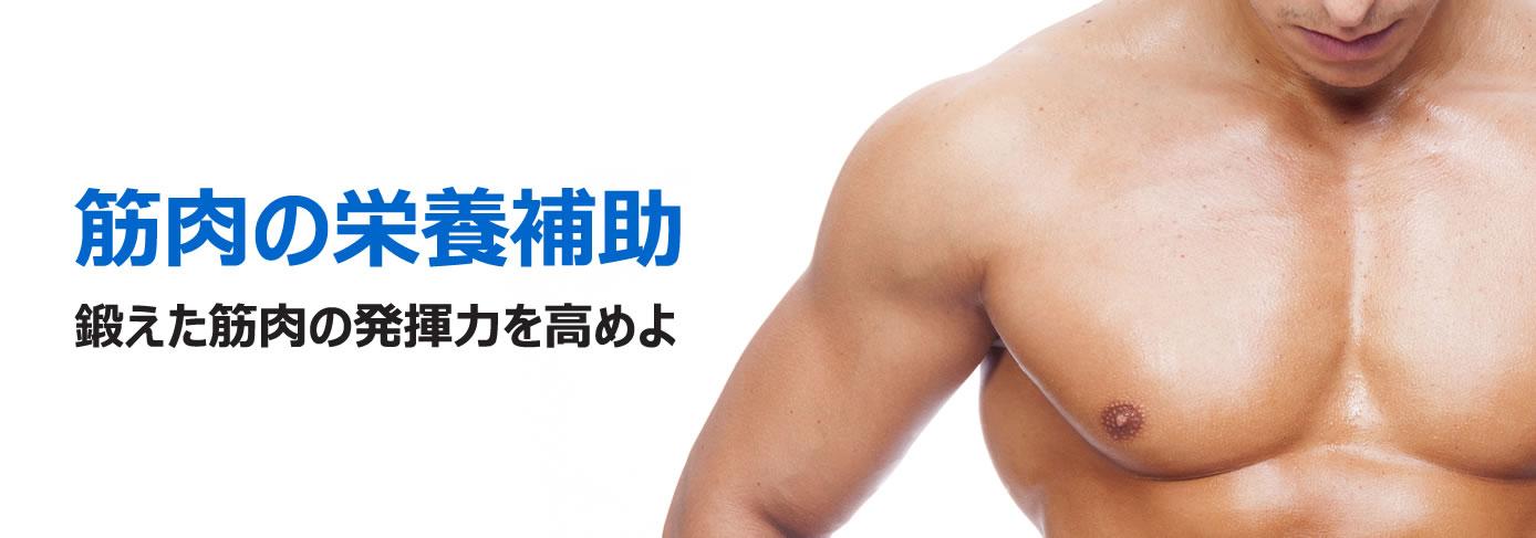 クレアチンは筋肉は欠かせない栄養成分