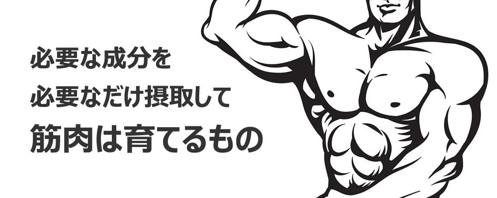 筋肉・筋力アップサプリとプロテインの併用はアリ